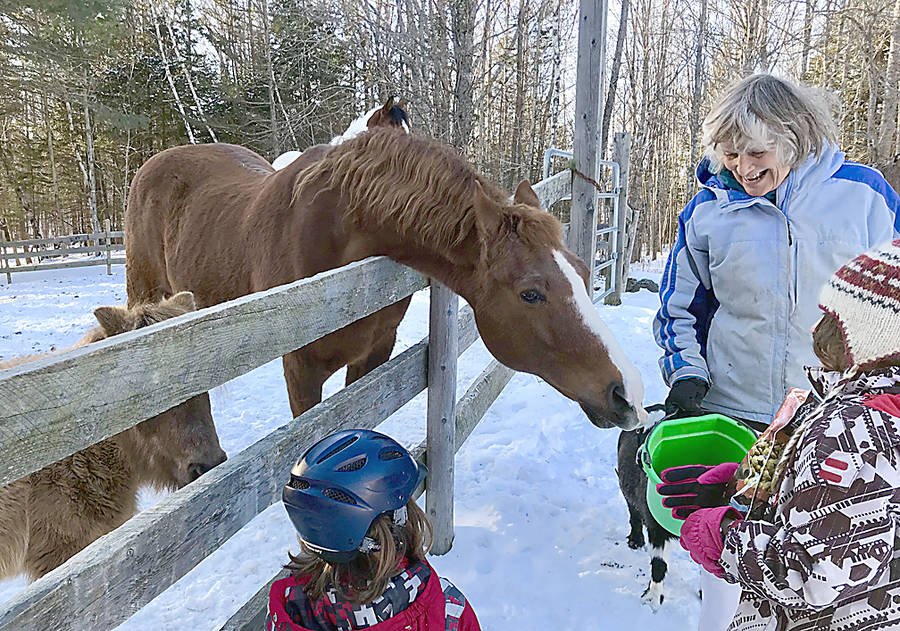 <p>CONTRIBUTED PHOTO</p><p>Patricia McGill is a founder of the therapeutic riding program at Hinchinbrook Farm in Blockhouse.</p>