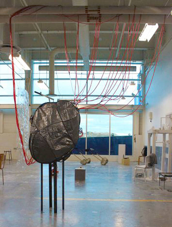 <p>CONTRIBUTED PHOTO</p><p>Ada Denil&#8217;s <em>Vascular System-Port Campus </em>has her among nine other NSCAD University students vying for a $5,000 award and the chance to have their art exhibited as part of NSCAD&#8217;s permanent collection.</p>