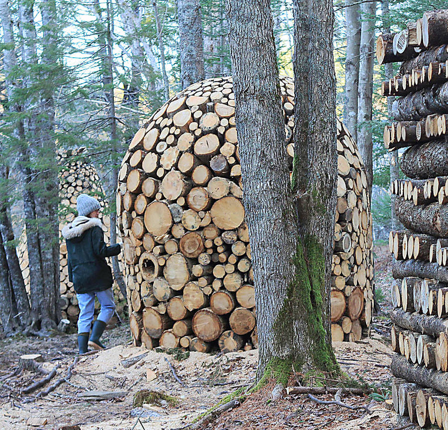 <p>FILE PHOTO</p><p>Artist Gillian Maradyn-Jousey created the first Art on the Trail installations, on the Bay to Bay trail from Mahone Bay to Lunenburg.</p>