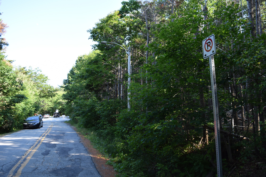 <p>MICHAEL LEE PHOTO</p><p>No-parking signs were placed along both sides of Carter's Beach Road with the intention of limiting larger vehicles such as RVs and buses from parking there. They were found to be the wrong signs and were later removed.</p>