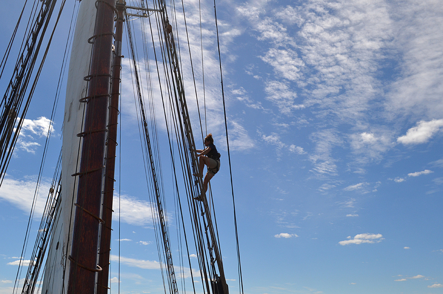 <p>EMMA SMITH PHOTO</p><p>Returning deckhand Mackenzie Fraser goes aloft Bluenose II, one of the only things the newbie deckhands weren't allowed to do.</p>