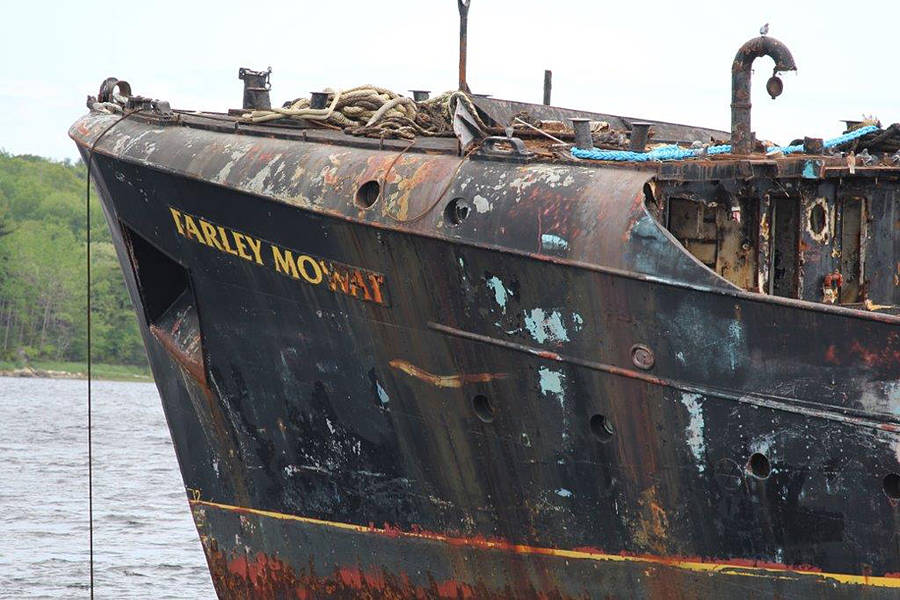 <p>CONTRIBUTED PHOTO</p><p>The MV Farley Mowat is set to be towed to and then dismantled at the Port Mersey Commercial Park.</p>