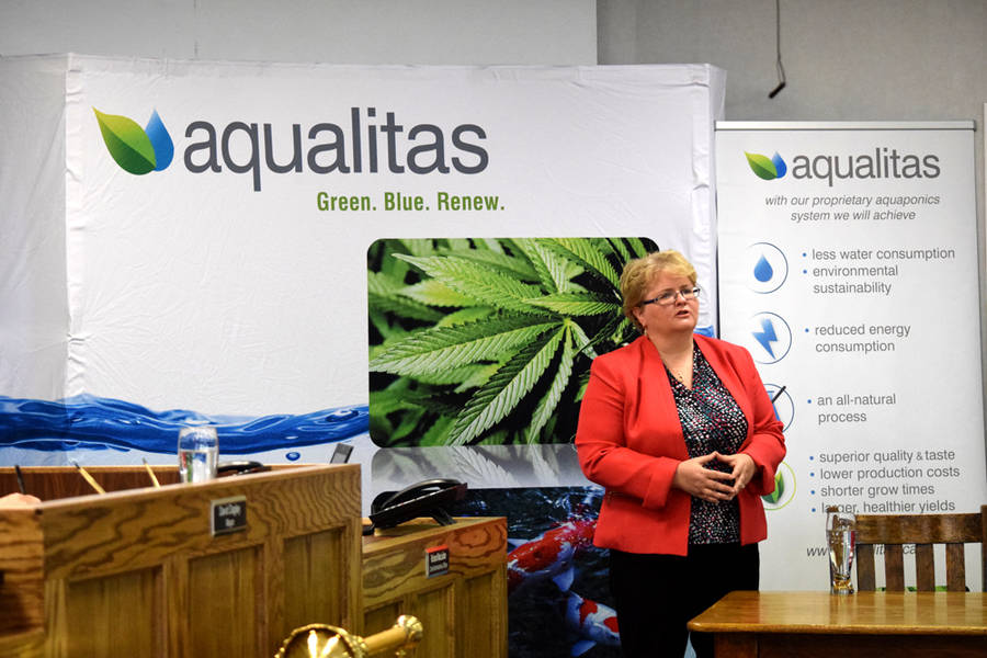 <p>MICHAEL LEE PHOTO</p><p>Myrna Gillis, chief executive officer of the Bedford-based medical marijuana company Aqualitas, speaks to the Region of Queens Municipality on June 13.</p>