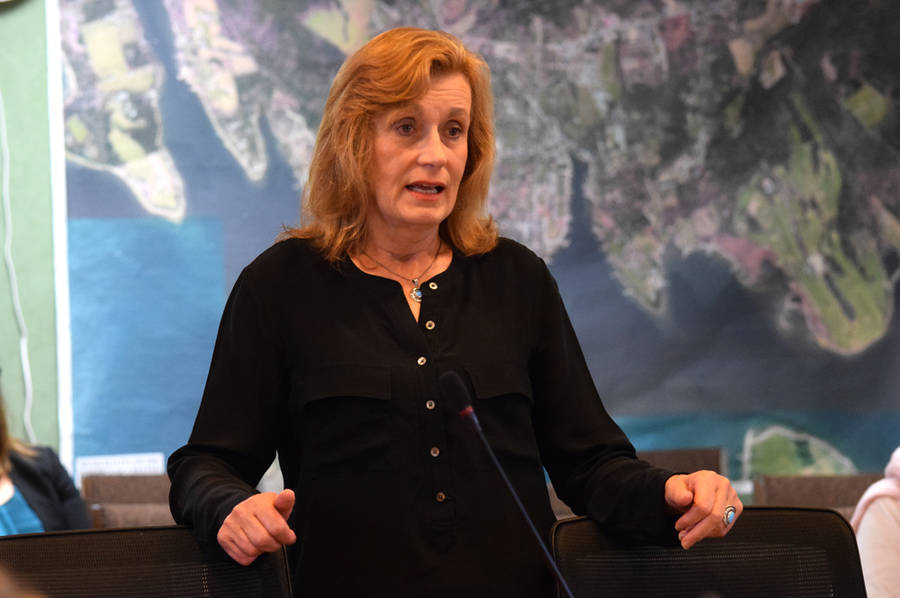 <p>MICHAEL LEE PHOTO</p><p>South Shore Regional School Board vice-chair Theresa Griffin speaking to the Municipality of Chester on September 7.</p>