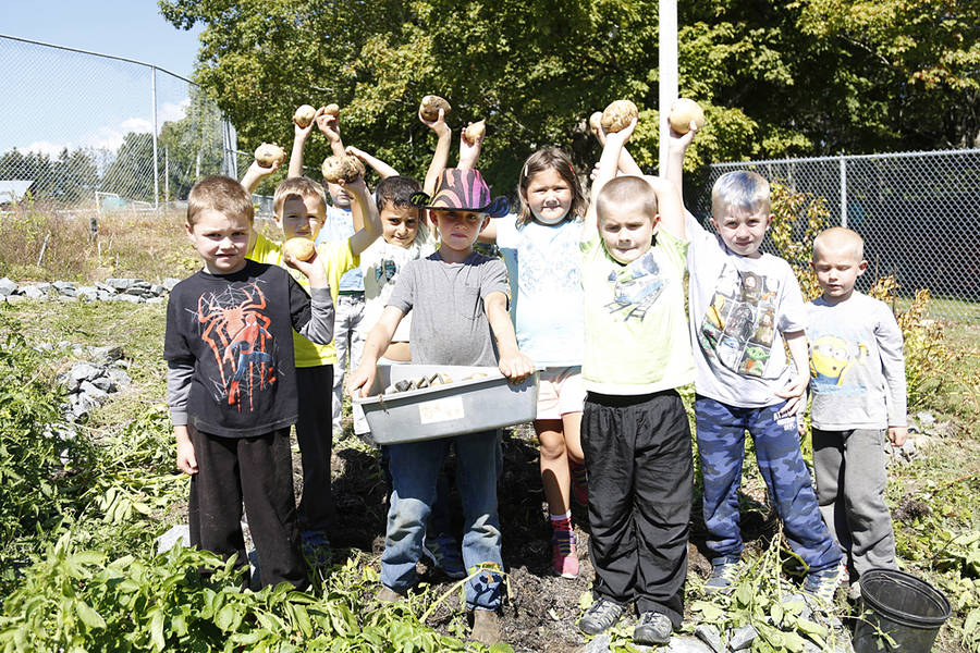 <p>BRITTANY WENTZELL PHOTOS</p><p>Students at Petite Riviere Elementary hold up the potatoes they just harvested.</p>