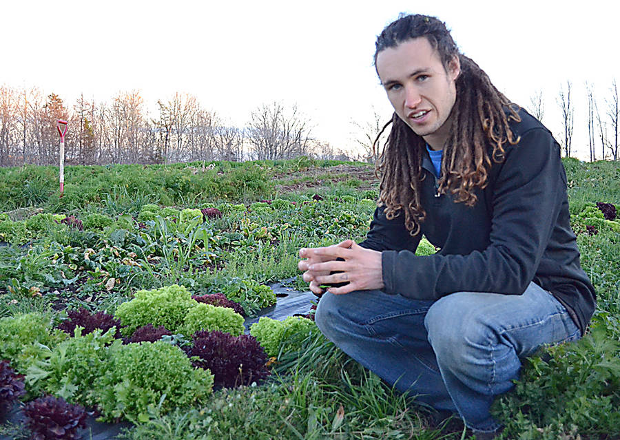 <p>GAYLE WILSON PHOTO</p><p>Teric Greenan helps operate a small farming cooperative in Barss Corner and is working to develop a robot that provides an organic option to herbicides.</p>