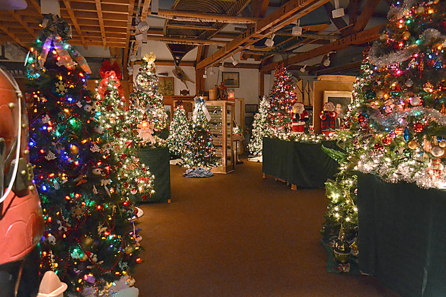 <p>GAYLE WILSON PHOTO</p><p>The Festival of Trees and Dickensville features 40 Christmas trees of varying sizes.</p>