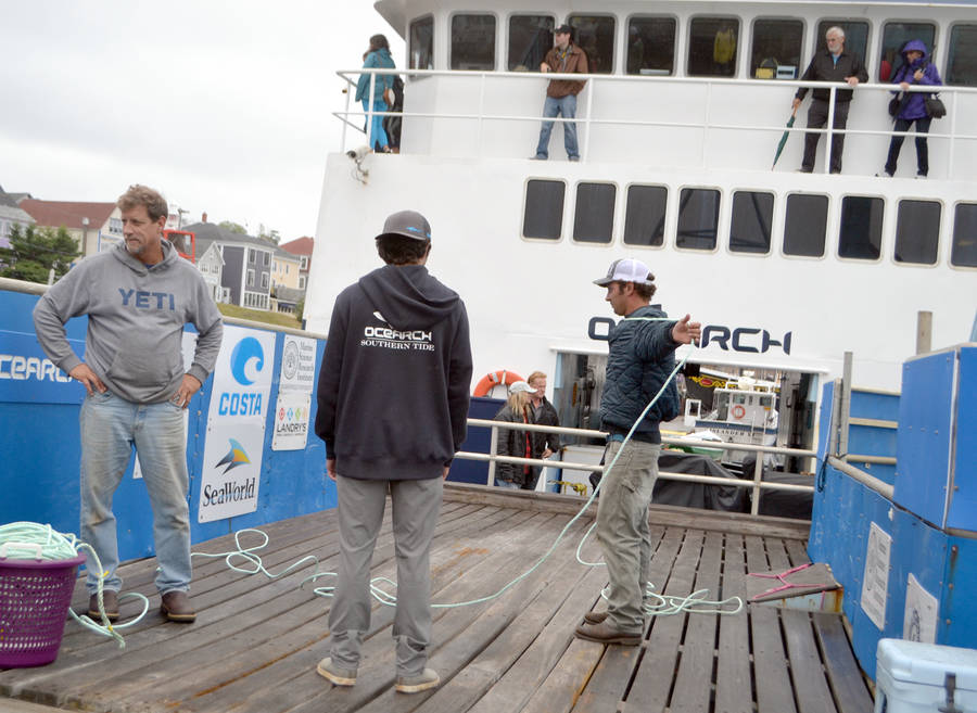 <p>KEITH CORCORAN, PHOTO</p><p>Ocearch crews, in Lunenburg on September 19, prepare for their Nova Scotia expedition. The organization opened their vessel to tours on the day.</p>